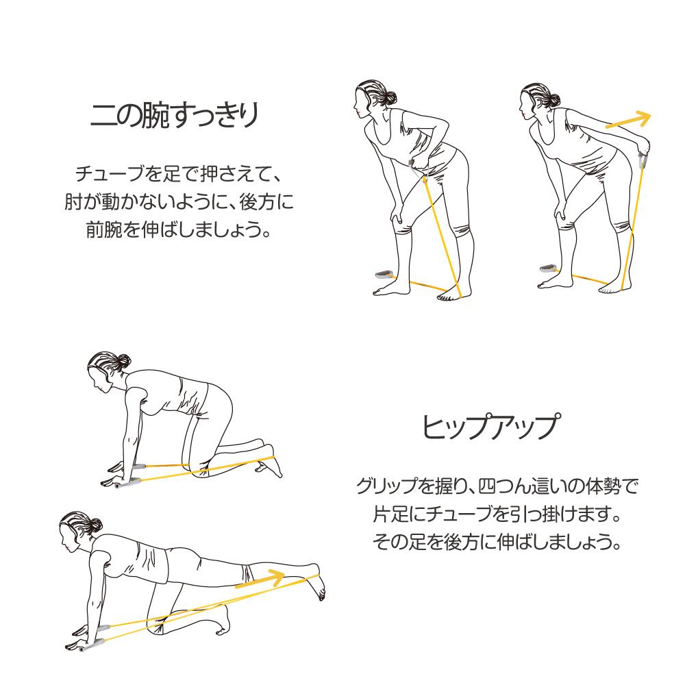 チューブ 使い方 トレーニング